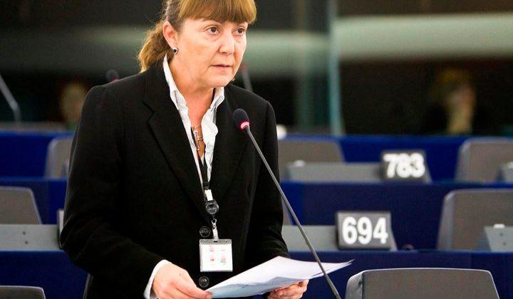 Dezbatere informală pe tema schimbării Legii Partidelor